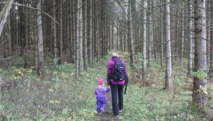 IDYLL: Ganske digg med en bra skog i nærheten.